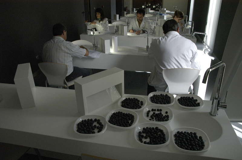 La Estación Enológica de Haro recupera para nuevos usos su bodega tradicional
