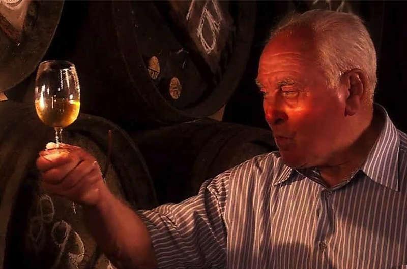 Se ha presentado en Madrid el documental 'Las catedrales del vino', un tributo a la cultura vitivinícola en Rioja y Jerez