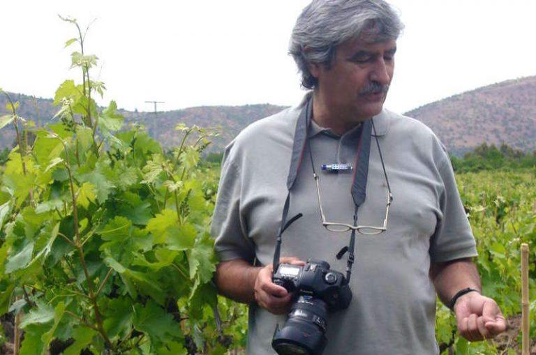 Entrevista a Luis Vicente Elías: «Es un error haber separado las rutas del vino de Rioja Alavesa y Rioja Alta»
