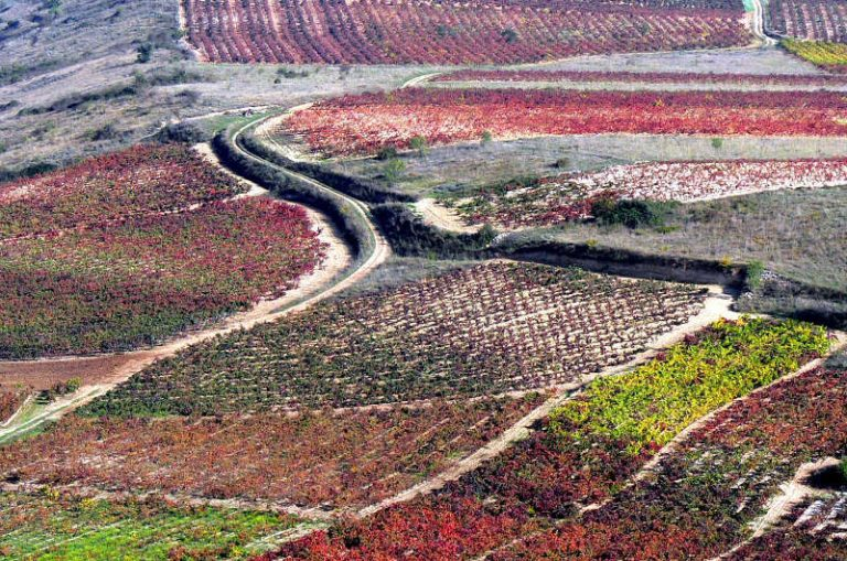 El Gobierno de La Rioja pone en marcha una ruta de enoturismo por las localizaciones de la serie de TVE 'Gran Reserva'