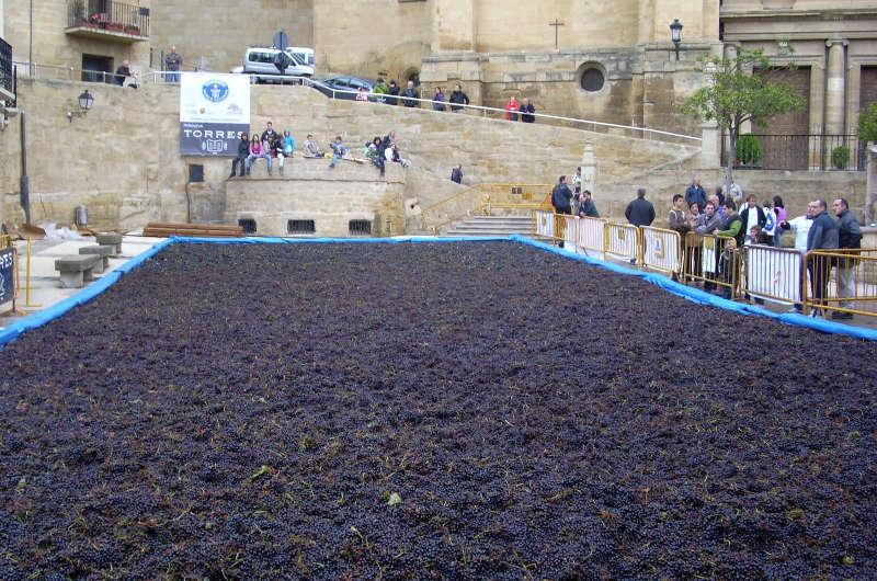 Labastida se propone batir el Récord Guinness de personas pisando uva simultáneamente