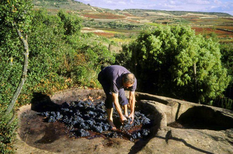 Lagares rupestres en la DOC Rioja