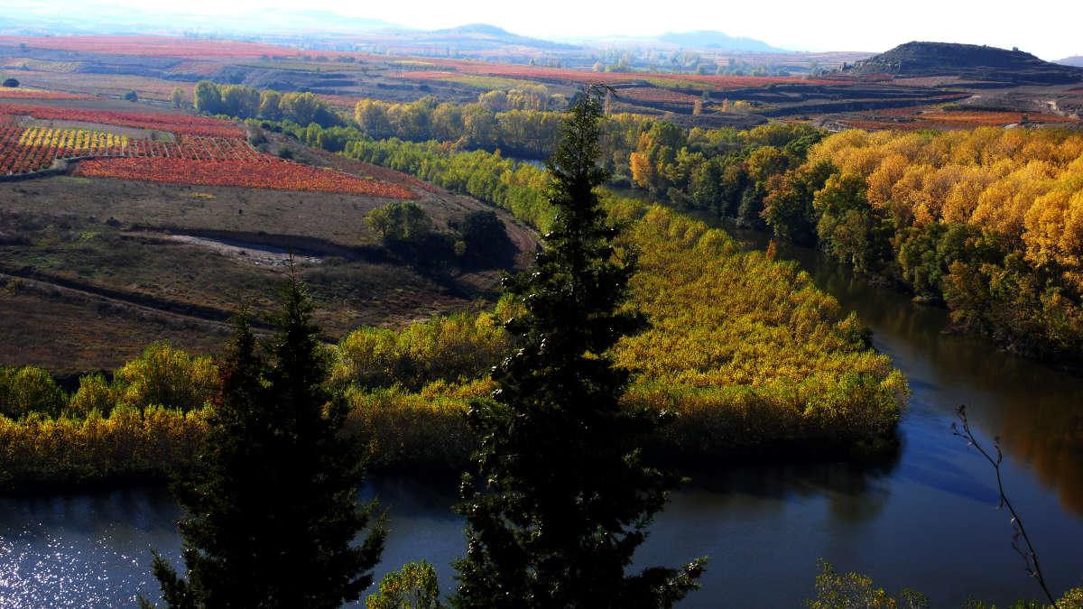San Vicente de la Sonsierra, río Ebro y viñedos