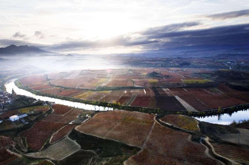 Miradores de viñedos en la DOC Rioja